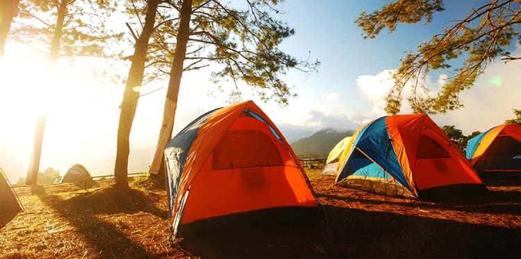 Three camping tents lined up outdoors with trees surroundingused to represent recreational Insurance Franklin TN